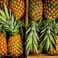 Taiwanese pineapples land in Japanese supermarket chain