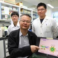 Taiwan research team proposes alternative coronavirus cure