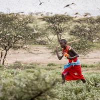 簡又新專欄 – 東非蝗災、都市空污及英國節能減碳