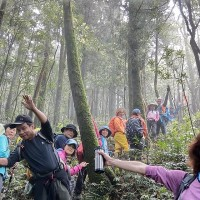 Taiwan's Forestry Bureau urges social distancing while hiking