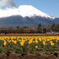 Wuhan coronavirus ruins Japan's Golden Week