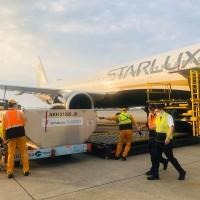 星宇航空宣布: 6月份澳門、檳城航線 將恢復部分航班載客服務