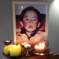 Pompeo demands China disclose whereabouts of Tibet's Panchen Lama