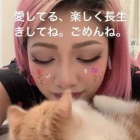 日本實境節目女星木村花 疑因網路霸凌輕生 Netflix「雙層公寓」停播