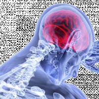夏季高溫吹冷氣更易腦中風! 台灣神經內科醫師:高血脂、抽菸、飲酒為高危險族群