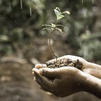 簡又新專欄 – 氣候緊急狀態下的因應之道:以印尼洪水與儲電系統為例