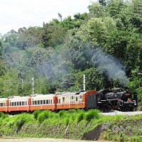 Taiwan Railways Administration restarts rail cruise tours from July