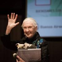 Jane Goodall wins Taiwan's 2020 Tang Prize