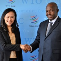 Taiwanese delegation's advice adopted in WTO director-general election