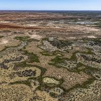 澳洲史上最大土地收購案 新國家公園將用以保育瀕危物種