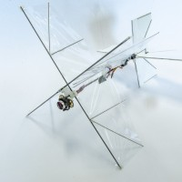Taiwanese scientists help develop innovative flapping wing drone