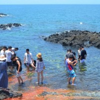 Taiwan's Penghu mulls travel charge for visitors