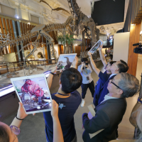 恐龍復活了!台灣博物館首創擴增實境導覽 互動式體驗增添科普樂趣