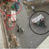 我要吃肉!中國江蘇豬肉貨車失控翻覆、上百村民哄搶7噸肉連車門都被搶走