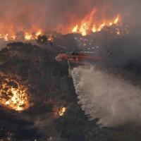簡又新專欄 – 澳洲森林大火 自然還是自燃