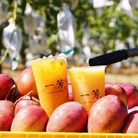 Taiwan's Yi Fang Fruit Tea making forays into US, Europe, Middle East