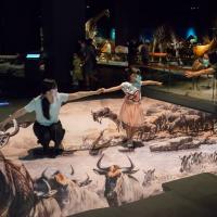 南台灣奇美博物館創新體驗 三大展廳藝術、動物、樂器注入新元素