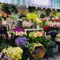 Taipei MRT stations transform into flower shops to aid wounded industry