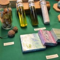 友善環境 林試所:瓊崖海棠油可開發作為天然防曬霜