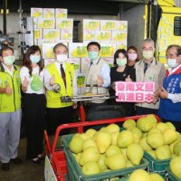 Taiwan resumes pomelo exports to Japan after 2 decades