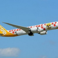 Scoot to resume flights between Kaohsiung, Singapore and Osaka from Sept. 19