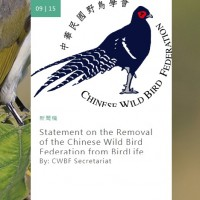 Bird conservation group removes Taiwan for not complying with China's political agenda