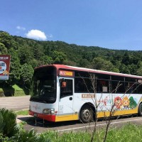 Take Taiwan Tourist Shuttle's Dongyanshan Route to enjoy vast forests in Taoyuan