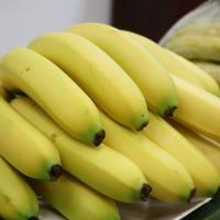 農糧署:台灣香蕉11月可望成為日本學童午餐果品