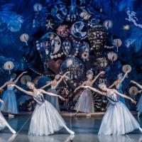 莫斯科芭蕾舞團再增4例武漢肺炎案例 台灣演出全取消