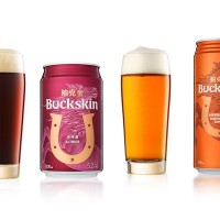 Taiwan's Buckskin wins 2 World Beer Awards