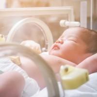 泡配方奶沒洗手 台灣10天大嬰兒染沙門氏菌 引發敗血症