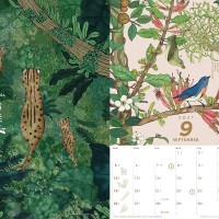 Popular Taiwan forest-themed calendar available for sale on Nov. 2