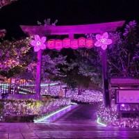 Southern Taiwan's Sichongxi Hot Spring Season kicks off
