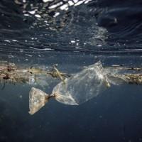 塑膠微粒越小 毒性越強 台灣中研院:潮間帶幼生體死亡率增3倍