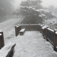 Snow falls on Taipei's Yangmingshan