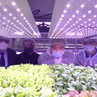Taiwan, Vatican reap harvest of smart agriculture at joint farm