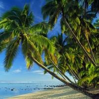 武漢肺炎衝擊經濟 太平洋島國轉向中國借錢