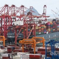 Taiwan's exports grow for 7th straight month in January