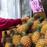 Local officials lament China's halt of Taiwan pineapple imports