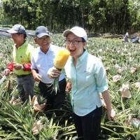 Taiwan calls for talks amid China's politically driven pineapple ban