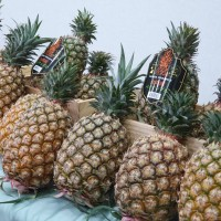 Hong Kong tightens inspections of Taiwan pineapples
