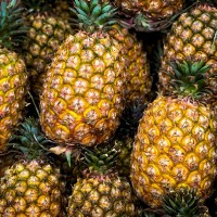 Japan orders record 6,000 tons of Taiwan pineapples
