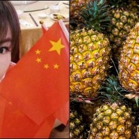 Fanny Liu kicked off China's TikTok for mentioning Taiwan pineapples