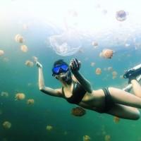 台灣與帛琉「旅遊泡泡」有譜 陳時中:將採「綠色通道」模式進行