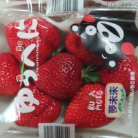 進口商品不合格名單曝光 驚見德國NUK奶嘴、日本MEIKO草莓