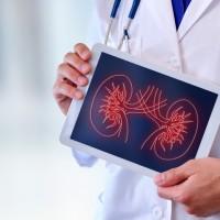 逾5成慢性腎病患者輕忽三高控制 醫:當心敗腎又傷心