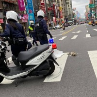 Taiwan cops praised for attempted cat rescue