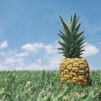 China rolls out agri investment incentives for Taiwan after pineapple ban