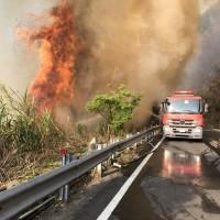 更新【安全第一】台灣阿里山森林大火已撲滅•台18線20日15時開放通行 國家森林遊樂區仍正常開放