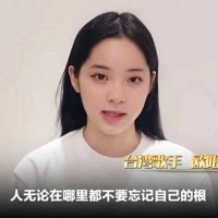 Taiwan celebrities appear in Chinese propaganda video